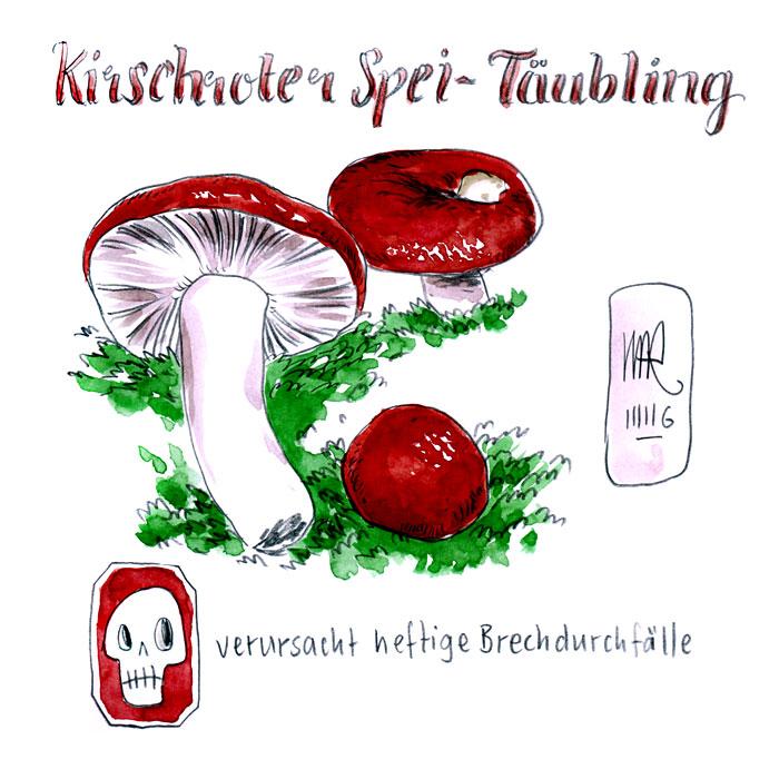 Kirschroter Spei-Täubling