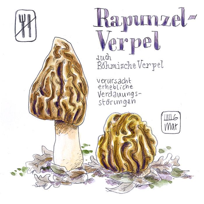 Rapunzel-Verpel