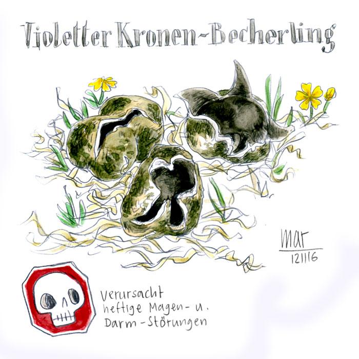 Violetter Kronen-Becherling